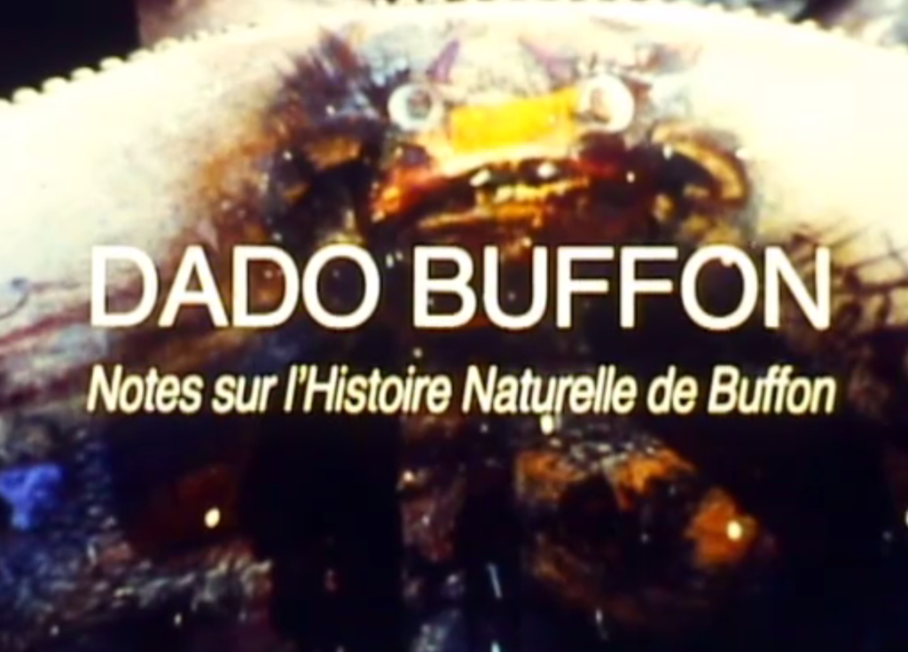 Dado Buffon - Notes sur l'Histoire Naturelle de Buffon