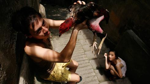 Hoang Diep Nguyen