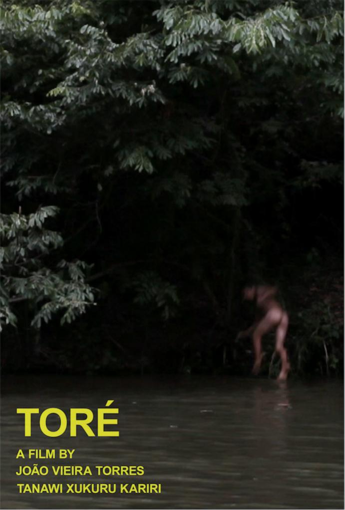 João Vieira Torres