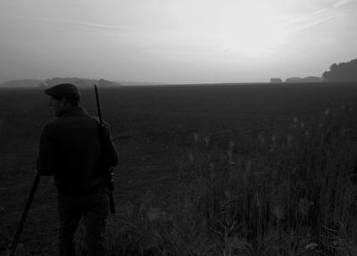 Hunting Down