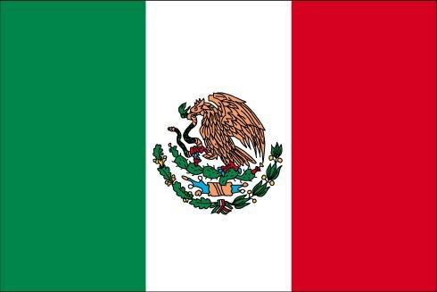 Bilan Mexique - 2004