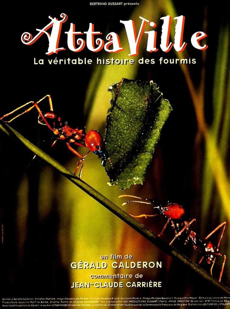 Attaville, la véritable histoire des fourmis
