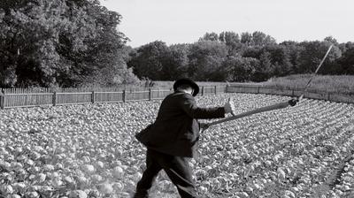 Ruban blanc - © les films du losange 2009