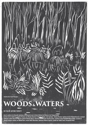 Woods & Waters