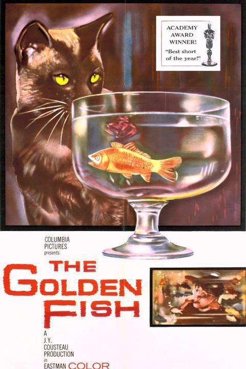 Histoire d'un poisson rouge - Poster Etats-Unis