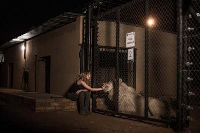 Mia and the White Lion - © Emmanuel Guionet - Galatée Films - Outside Films
