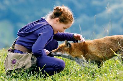 le-renard-et-l-enfant