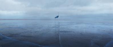Sous la glace