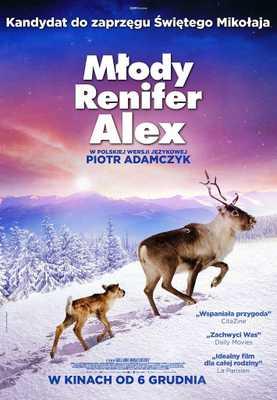Ailo's Journey - Poland