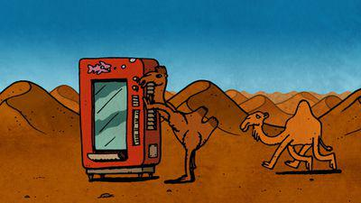 The Camel and the Dromedary