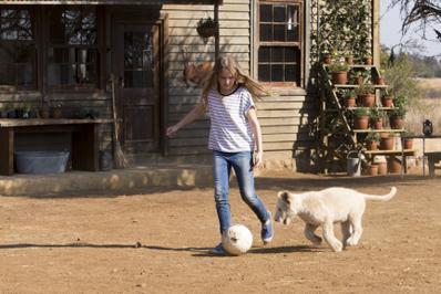 Mia and the White Lion - © Coert Wiechers - Galatée Films - Outside Films