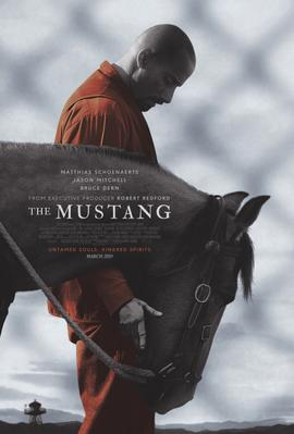 The Mustang - Poster - Nevada