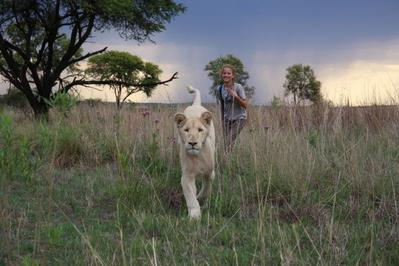 Mia and the White Lion - © Kevin Richardson - Galatée Films - Outside Films