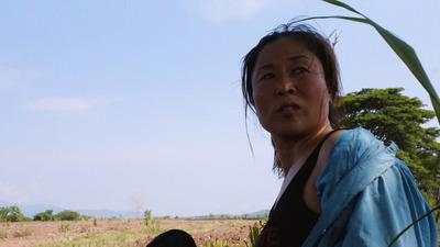 Mrs B., a North Korean Woman