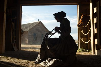The Homesman - © Dawn Jones