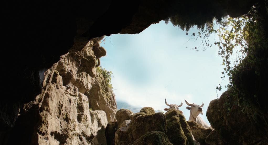 Michelangelo Frammartino - © Doppio Nodo Double Bind – Coproduction Office