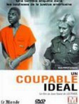 Un coupable ideal / 理想的な犯人
