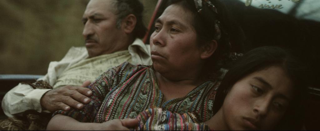 Festival International du Film de Mar Del Plata - 2015
