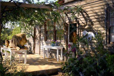 Mia y el león blanco - © Patrick Toselli - Galatée Films - Outside Films