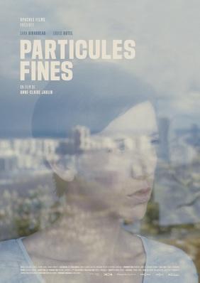 Fine Particles