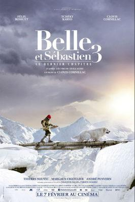 Belle and Sebastian, Friends for Life - Poster - Belgium