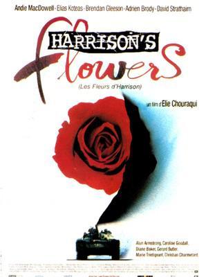 Harrison's Flowers/戦場のジャーナリスト
