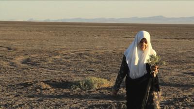 Mrs Saïdi