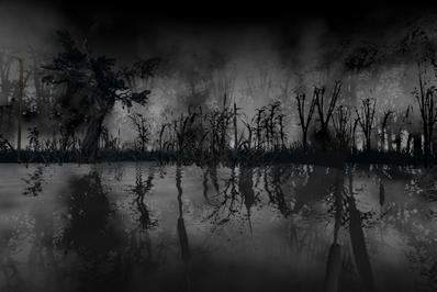 The Roaming - Wetlands