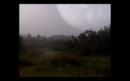 La Forêt de l'espace