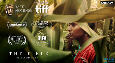 The Field - © Lionfish
