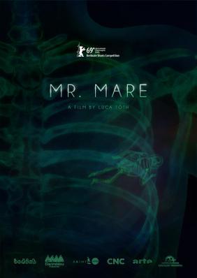 Lidérc úr (Mr. Mare)