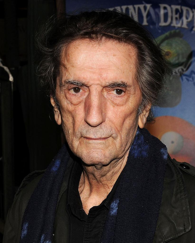 harry dean stanton partly fiction subtitles