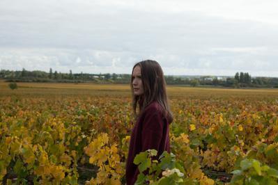 Back to Burgundy - © Emmanuelle Jacobson-Roques - Ce Qui Me Meut