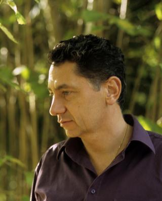 Laurent Roth