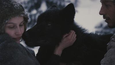 Jeune fille et les loups (La)