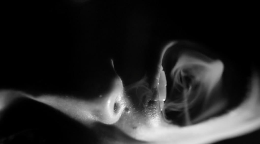 Les Êtres du brouillard