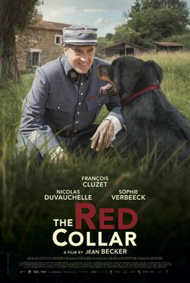 The Red Collar - Poster - International