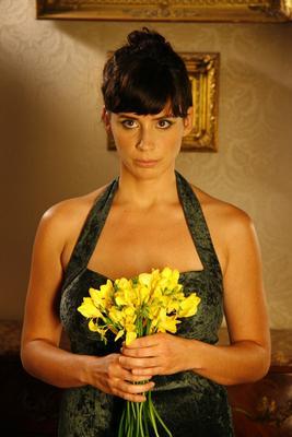 The Yellow Daffodils
