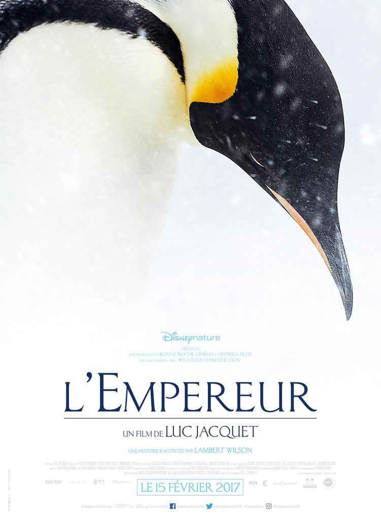 Bonne Pioche Cinéma