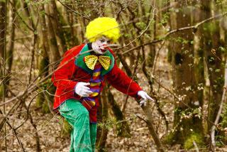 The Clown's Shout in the Wood
