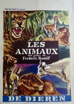 The Animals - Belgium