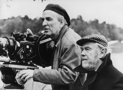 Le Grande Aventure du cinéma suédois
