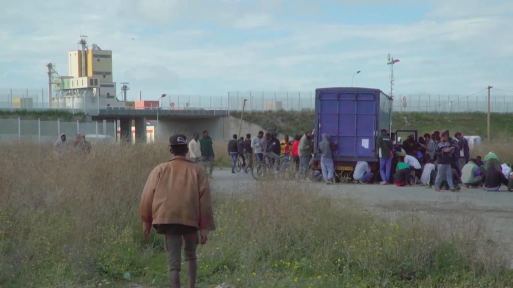 Festival international du court-métrage & du documentaire de Cracovie - 2017