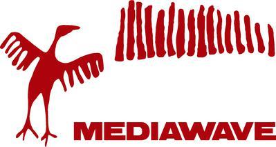 Mediawave - Encuentro internacional de Cine y Música de Fort Monostor - Komárom - 2008
