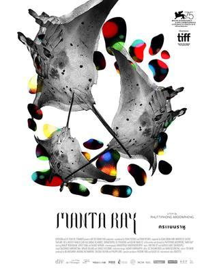 Manta Ray - International Poster