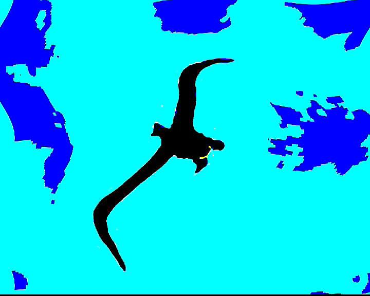 Animations aquatiques