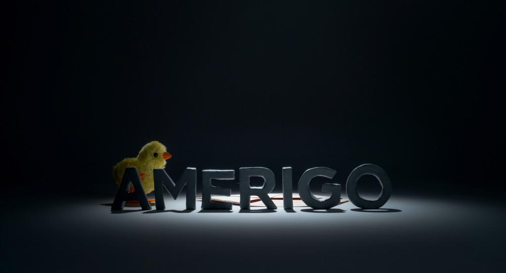 Amerigo and the New World