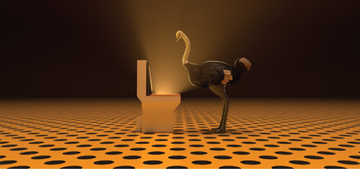 The Ostrich Politic