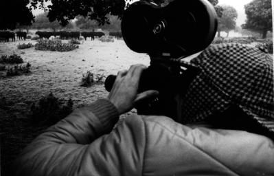 Le Taureau dans la tête - © Coll. Jean-Louis Cros