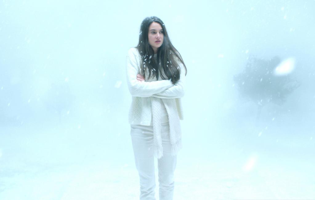 Pájaro blanco de la tormenta de nieve - © Why Not Productions - Desperate
